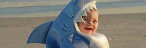 А говорят что акулы страшные и злые...