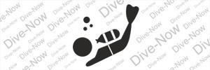 """Рубрика """"Dive-now"""""""