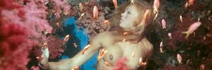 Самые дорогие подводные фотографии Мира
