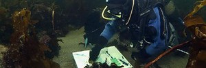 Живопись под водой и льдами