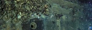 Мародеры идут под воду