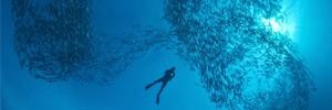 """""""Море - это вечное движение и любовь, вечная жизнь"""""""