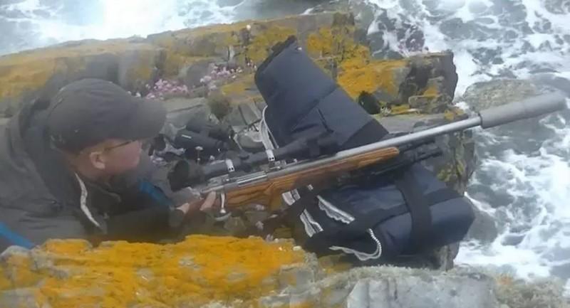 Добровольцы Sea Shepherd зафиксировали убийство тюленей в Шотландии