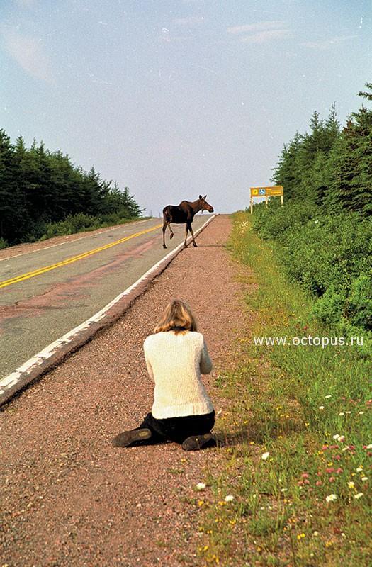 Nova Scotia, Канада
