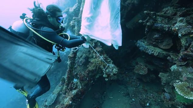 Фотосессия с акулами на Фиджи