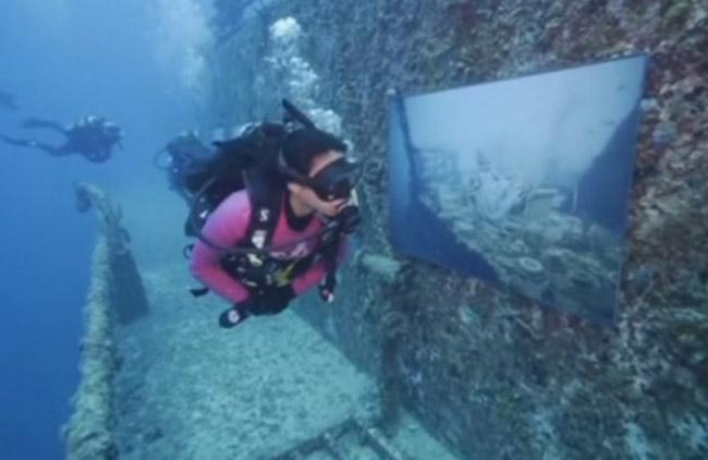 Во Флориде открылась подводная галерея Андреаса Франке «Ванденберг: жизнь под водой»