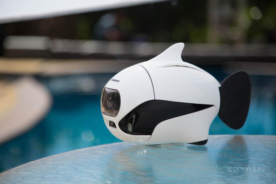 Robosea представила бионическую «рыбку» BIKI