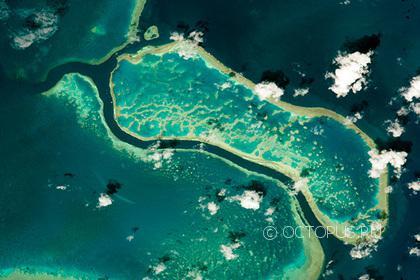 Цена Австралийского Большого барьерного рифа