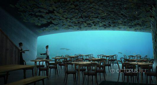 Подводный ресторан откроется в Норвегии
