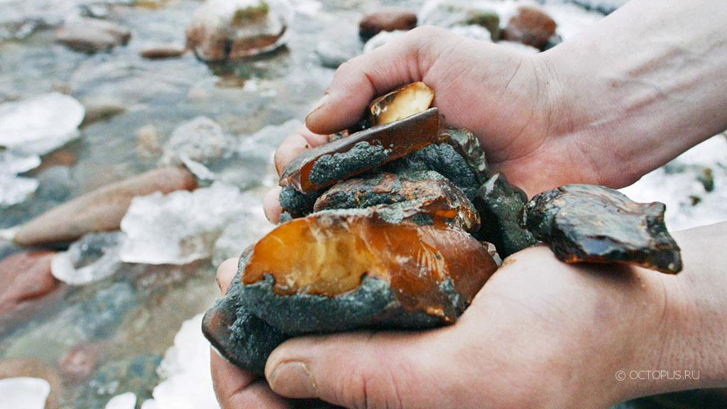 Озеро Янтарное привлекло к себе «черных» копателей